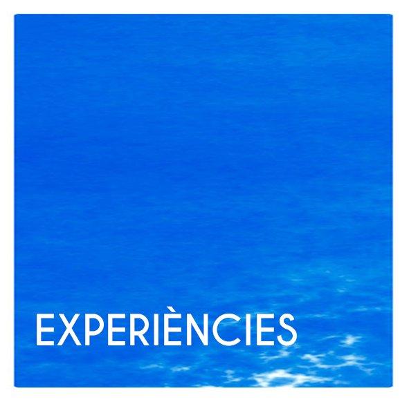 experiencies